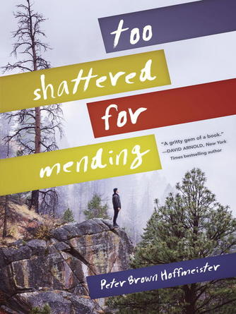 Peter Brown Hoffmeister: Too shattered for mending