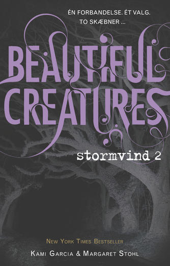 Kami Garcia: Beautiful creatures - stormvind. 2
