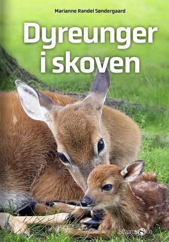 Marianne Randel Søndergaard: Dyreunger i skoven
