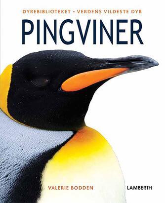 Valerie Bodden: Pingviner