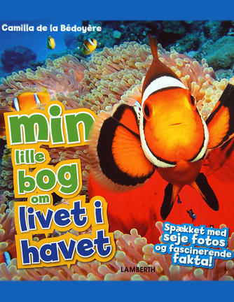 Camilla De la Bédoyère: Min lille bog om livet i havet
