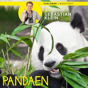 Sebastian Klein: Pandaen