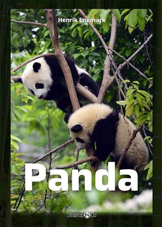 Henrik Enemark: Panda