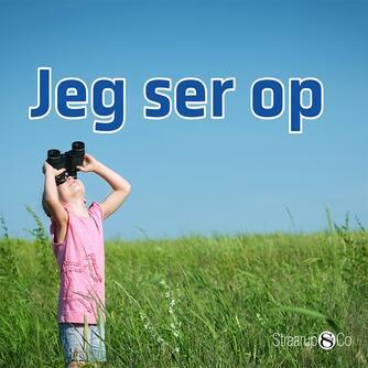Marianne Randel Søndergaard: Jeg ser op
