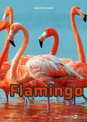 Henrik Enemark: Flamingo