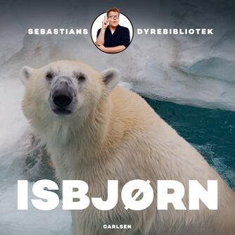 Sebastian Klein: Isbjørn