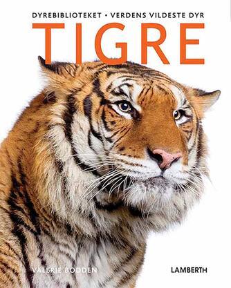 Valerie Bodden: Tigre
