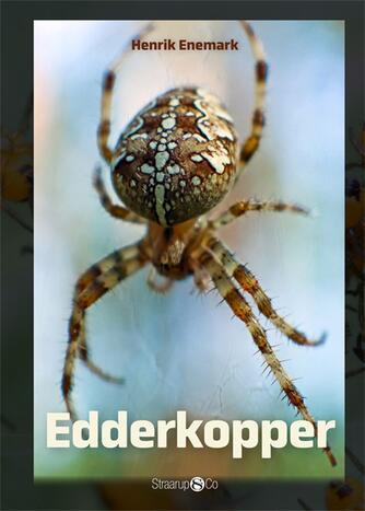 Henrik Enemark: Edderkopper