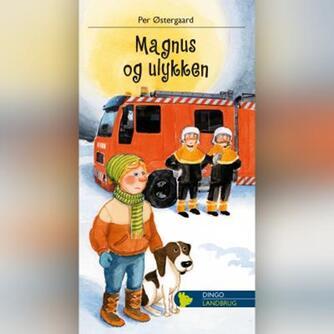 Per Østergaard (f. 1950): Magnus og ulykken