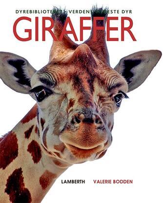 Valerie Bodden: Giraffer
