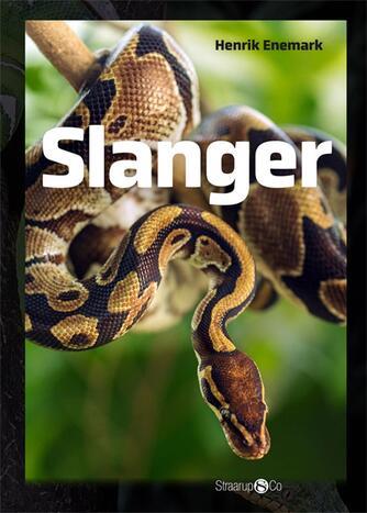: Slanger