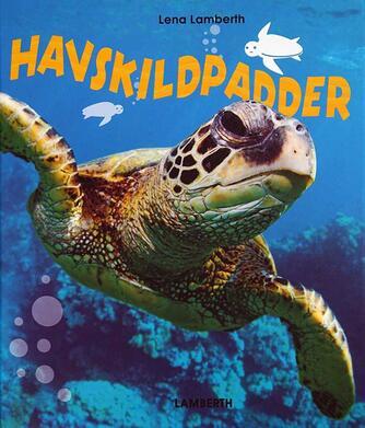 Lena Lamberth: Havskildpadder