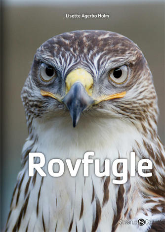 Lisette Agerbo Holm: Rovfugle