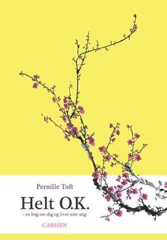 Pernille Toft: Helt O.K. : en bog om dig og livet som ung