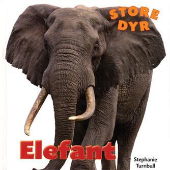 Stephanie Turnbull: Elefant