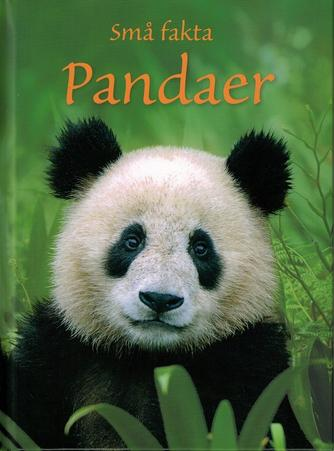 James Maclaine: Pandaer