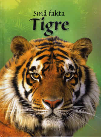 James Maclaine: Tigre
