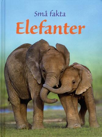 James Maclaine: Elefanter