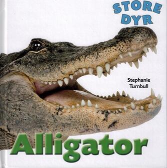 Stephanie Turnbull: Alligator