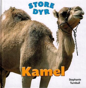 Stephanie Turnbull: Kamel