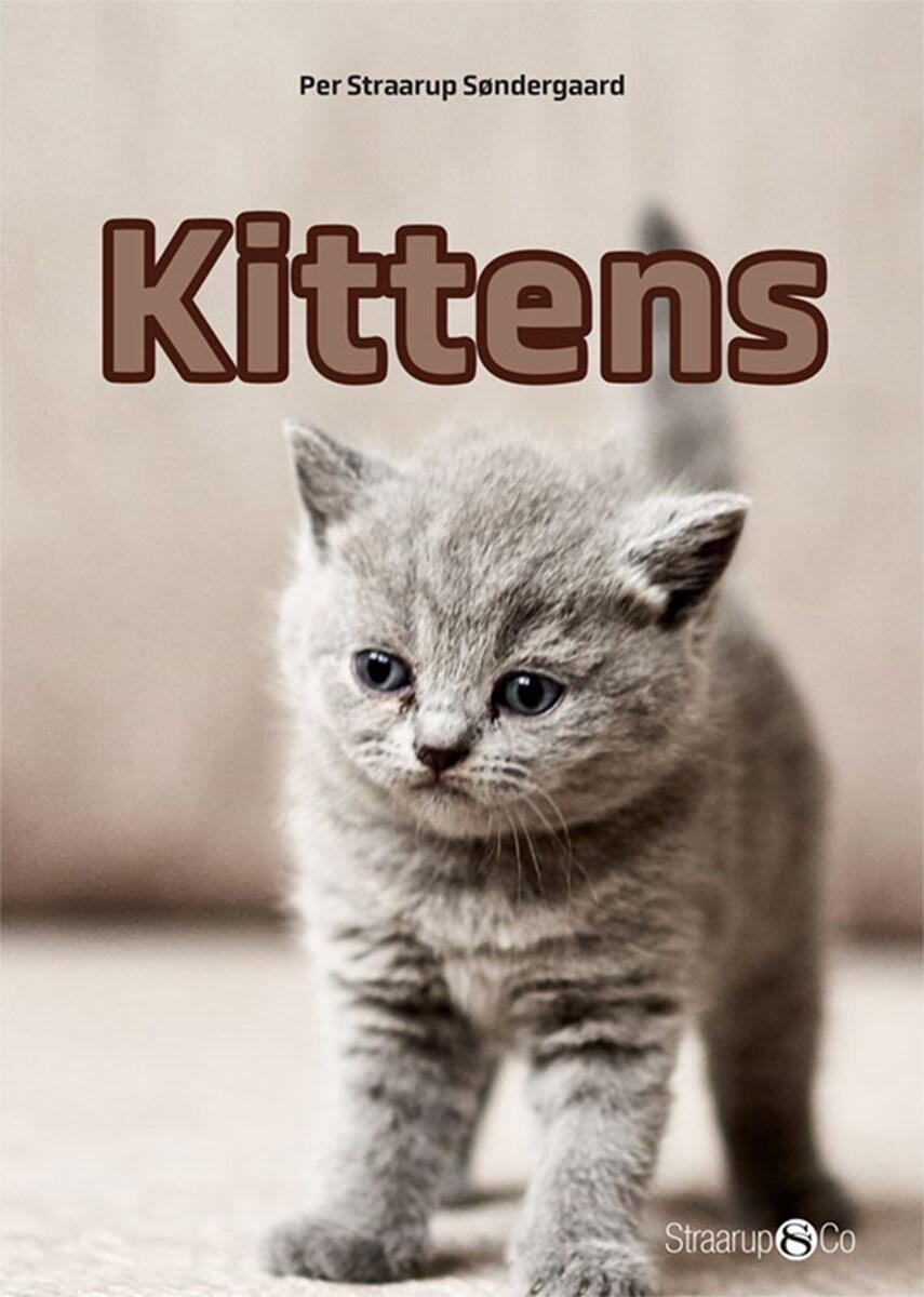Per Straarup Søndergaard: Kittens