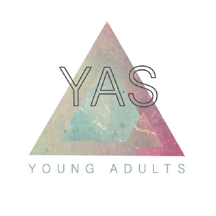 : YAS. 20, Fra bog til tv-serie