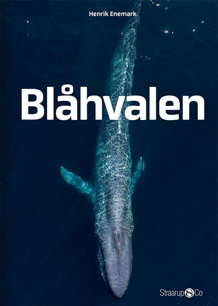 Henrik Enemark: Blåhvalen