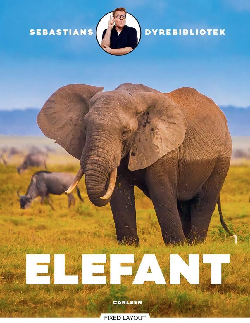 Sebastian Klein, Rikke Klein: Elefant