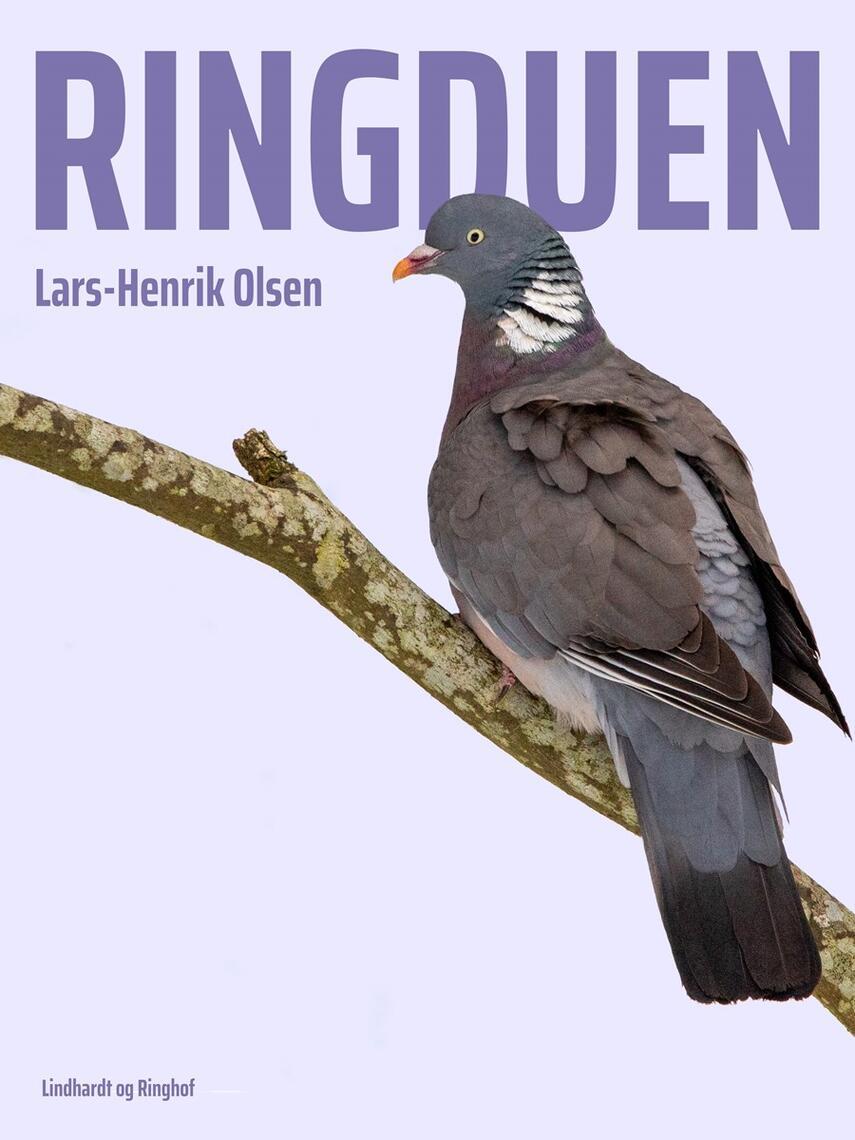 Lars-Henrik Olsen (f. 1946): Ringduen