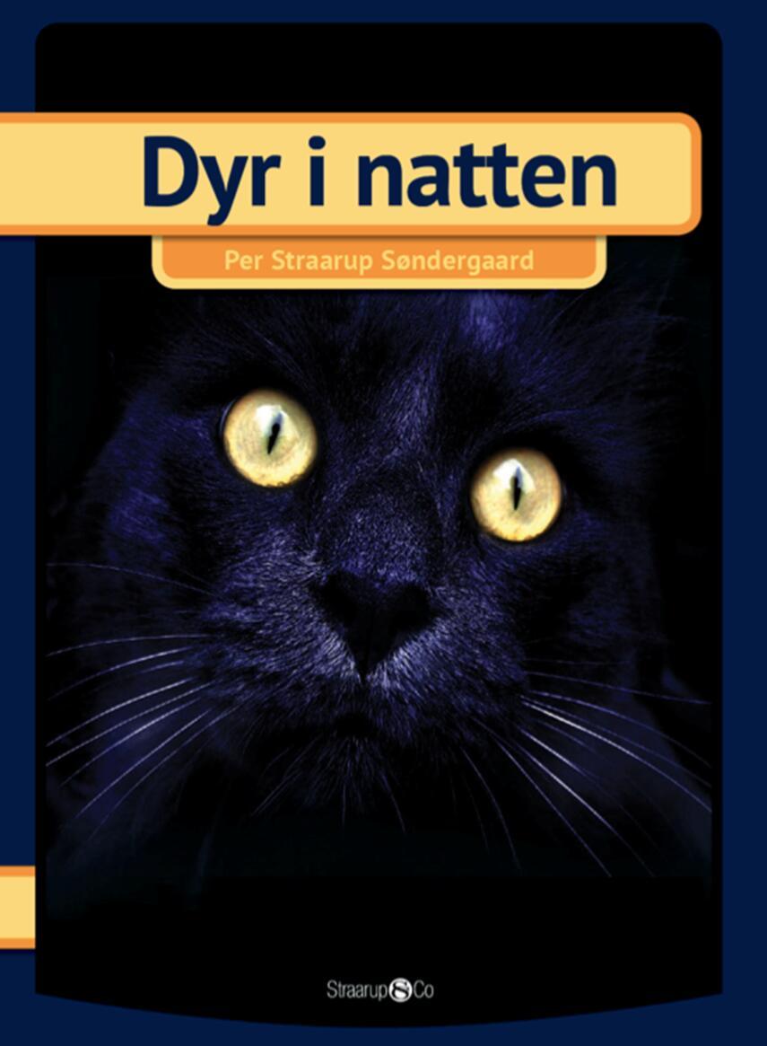 Per Straarup Søndergaard: Dyr i natten