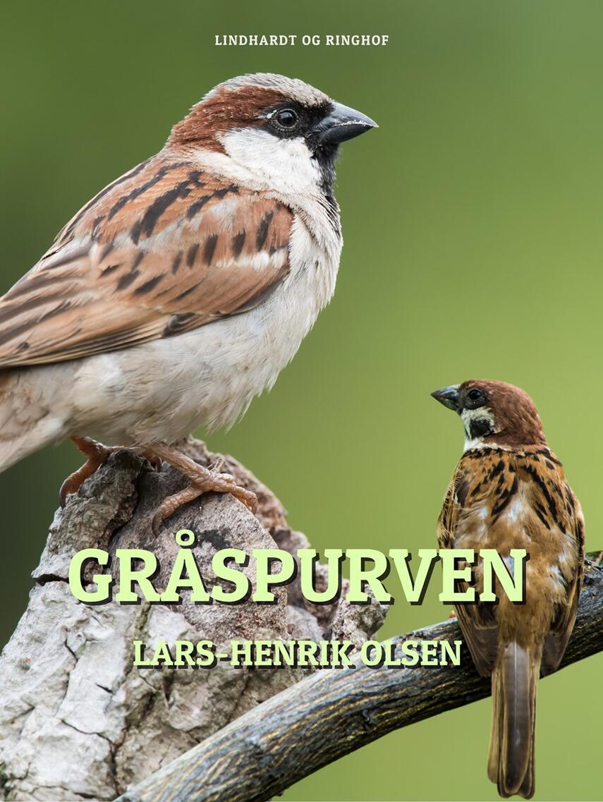 Lars-Henrik Olsen (f. 1946): Gråspurven