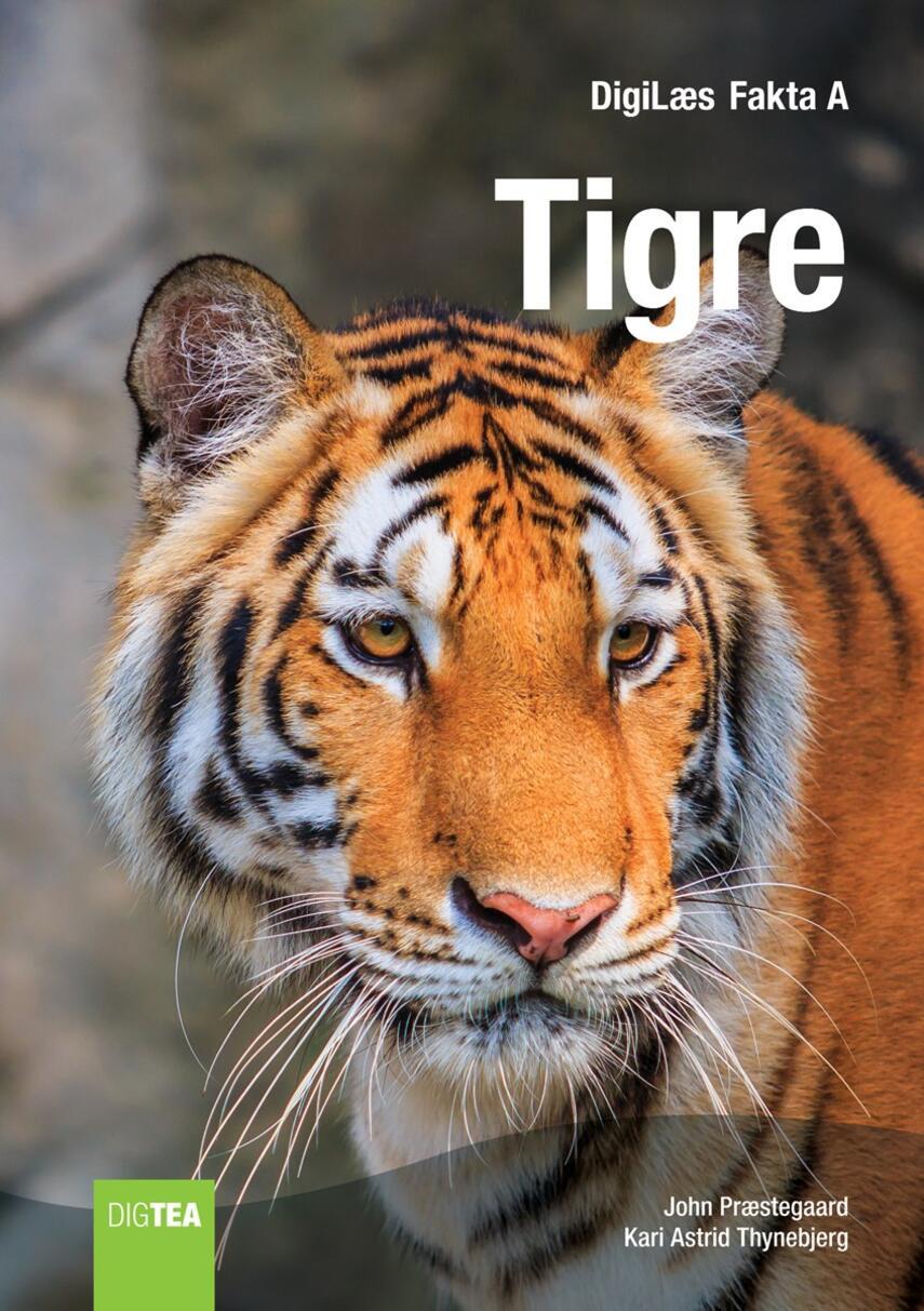 Kari Astrid Thynebjerg, John Nielsen Præstegaard: Tigre